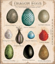 Dragon eggs