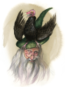 The Vulture Hat